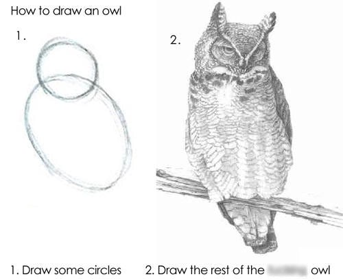 How to draw an owl(Credit: Internet meme)